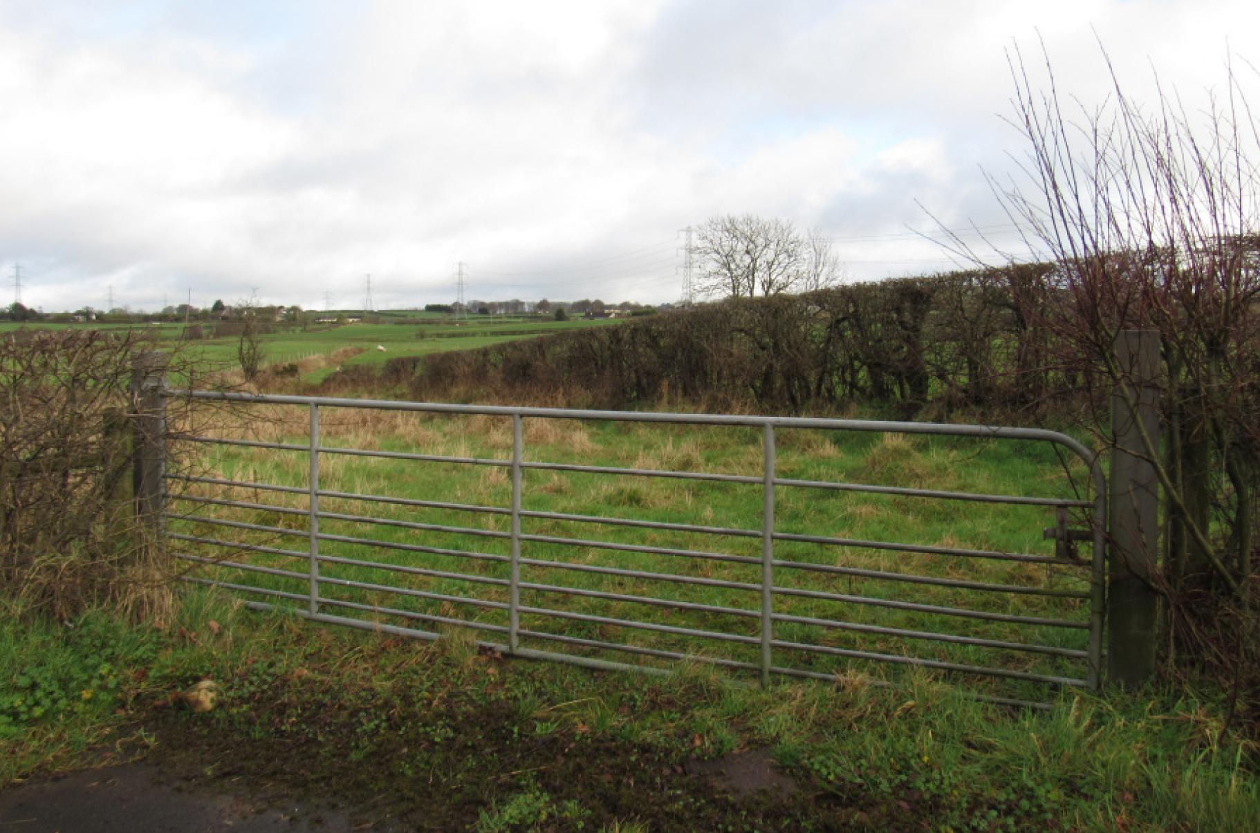 Agricultural Lands at Ballynure Road, Newtownabbey, Co. Antrim, BT78 5PN photo